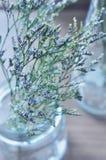 Flor bonita do borrão no vaso de vidro imagens de stock royalty free