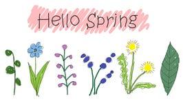 Flor bonito da garatuja com mola escrita à mão do sinal olá!, dente-de-leão Fotos de Stock Royalty Free