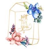 Flor botânica dos ramalhetes da peônia Grupo da ilustração do fundo da aquarela Quadrado de cristal do ornamento da beira do quad imagens de stock royalty free