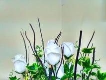 Flor branca bonita Fotografia de Stock