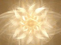 Flor branca brilhante Fotos de Stock Royalty Free