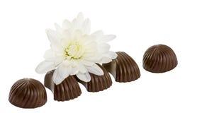Flor branca e chocolates pretos Imagens de Stock Royalty Free