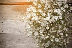 Flor branca na imagem de madeira do estilo do vintage da tabela foto de stock