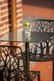 Flor branca no vaso que está na tabela no café exterior fotos de stock royalty free