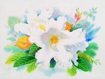 Flor branca realística das folhas da videira e do verde do lírio de easter Imagens de Stock