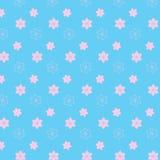 A flor brandamente cor-de-rosa da mistura denomina o teste padrão no fundo azul macio Fotos de Stock Royalty Free