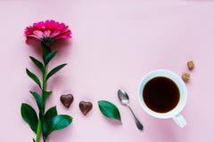 Flor, café e chocolate Imagens de Stock Royalty Free