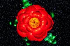 Flor, chimenea ligera Foto de archivo libre de regalías