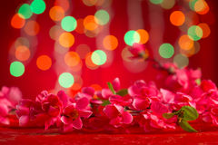 Flor china del ciruelo de las decoraciones del Año Nuevo Imágenes de archivo libres de regalías