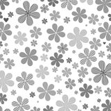 Flor cinzenta Fotografia de Stock