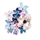 Flor color de rosa de la acuarela libre illustration