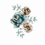 Flor color de rosa de la acuarela ilustración del vector