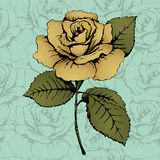 Flor color de rosa del oro Gráfico de la mano Brote, tronco y hojas Fondo azul con los modelos adornados Tarjeta, impresión, elem Fotos de archivo libres de regalías