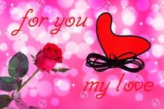 Flor color de rosa del rojo Imagenes de archivo