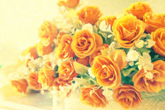 Flor color de rosa hermosa del foco suave abstracto Fotografía de archivo