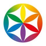 Flor coloreada arco iris del bebé de la vida Fotografía de archivo