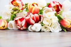 Flor coloreada primavera Fotos de archivo