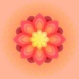 Flor colorida bonita Ilustração do vetor Foto de Stock