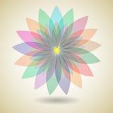 Flor colorida con el fondo de la sombra stock de ilustración