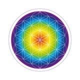 Flor colorida da geometria da vida em cores do arco-íris ilustração royalty free