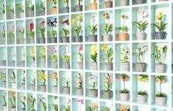 Flor colorida de la arcilla Fotos de archivo