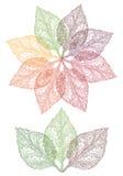 Flor colorida de la hoja, vector Foto de archivo