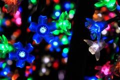 Flor colorida de la luz Foto de archivo