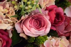 Flor colorida de la rosa en sala de reunión Imagenes de archivo