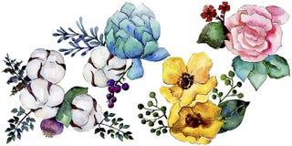 Flor colorida del ramo de la acuarela Flor botánica floral Elemento aislado del ejemplo ilustración del vector