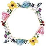 Flor colorida do ramalhete da aquarela Flor botânica floral Quadrado do ornamento da beira do quadro ilustração royalty free