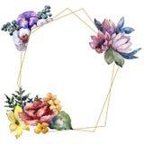 Flor colorida do ramalhete da aquarela Flor botânica floral Quadrado do ornamento da beira do quadro ilustração do vetor