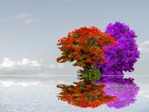 flor colorida en la nube oscura del cielo de la reflexión del árbol Imagen de archivo