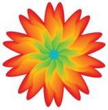 Flor colorido, elemento para o projeto Ilustração do Vetor
