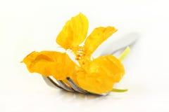 Flor comestível Fotos de Stock Royalty Free
