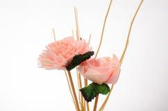 Flor con blanco Imagen de archivo libre de regalías