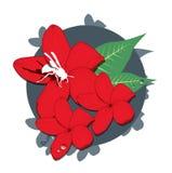 Flor con el insecto   Libre Illustration
