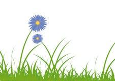 Flor con la hierba Fotografía de archivo libre de regalías