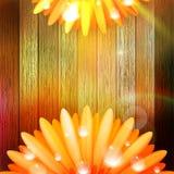 Flor con rocío en la madera EPS10 más Fotografía de archivo libre de regalías