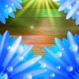 Flor con rocío en la madera EPS10 más stock de ilustración