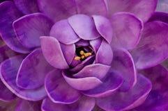 Flor con textura de los movimientos de la pintura Imagen de archivo
