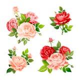 Flor cor-de-rosa bonita ilustração royalty free