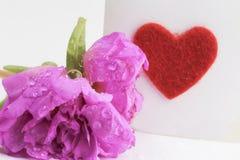 Flor cor-de-rosa bonita abstrata com gotas da água Fotografia de Stock