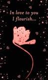 Flor cor-de-rosa bonita no fundo preto Imagem de Stock