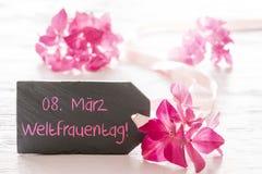 A flor cor-de-rosa da hortênsia, Weltfrauentag significa o dia das mulheres internacionais Imagens de Stock