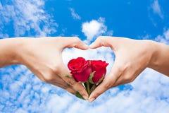 flor cor-de-rosa da posse da mão imagem de stock
