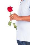 Flor cor-de-rosa da posse do homem novo fotografia de stock