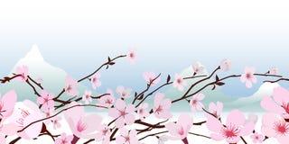 Flor cor-de-rosa delicada da mola ilustração do vetor