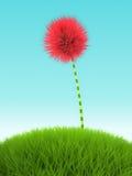 Flor cor-de-rosa do trevo na grama no fundo azul Imagens de Stock