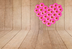 Flor cor-de-rosa do Zinnia foto de stock royalty free