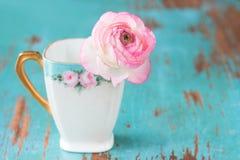 Flor cor-de-rosa no teacup imagens de stock royalty free